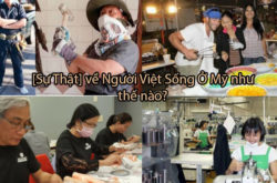 Sự thật về Người Việt Sống Ở Mỹ như thế nào ?