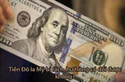 Tiền Đô La Mỹ(USD) Bị Rách, Hư Hỏng Có Đổi Được Không? Và Ở Đâu?