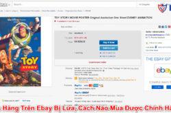Mua Hàng Trên Ebay Bị Lừa, Cách Nào Mua Được Chính Hãng?