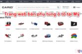 trang-web-ban-phu-tung-o-to-tai-my