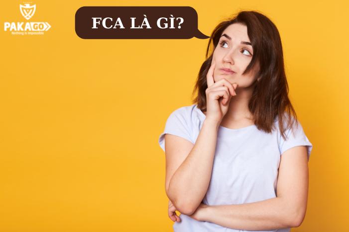 FCA là gì? Cách hiểu đúng và áp dụng chuẩn xác điều kiện FCA mới nhất 2021