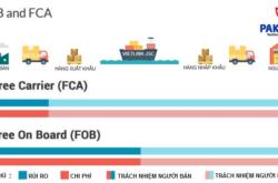 Phân biệt điều kiện giao hàng FCA và FOB